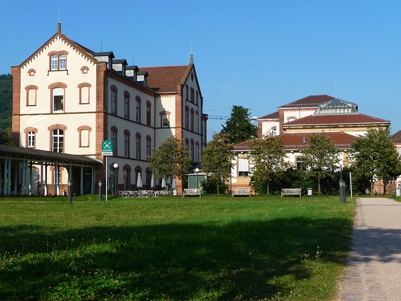 La colección Prinzhorn (Sammlung Prinzhorn) (Heidelberg)