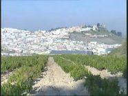 Córdoba – Pueblo a pueblo – Aguilar de la Frontera (documental)