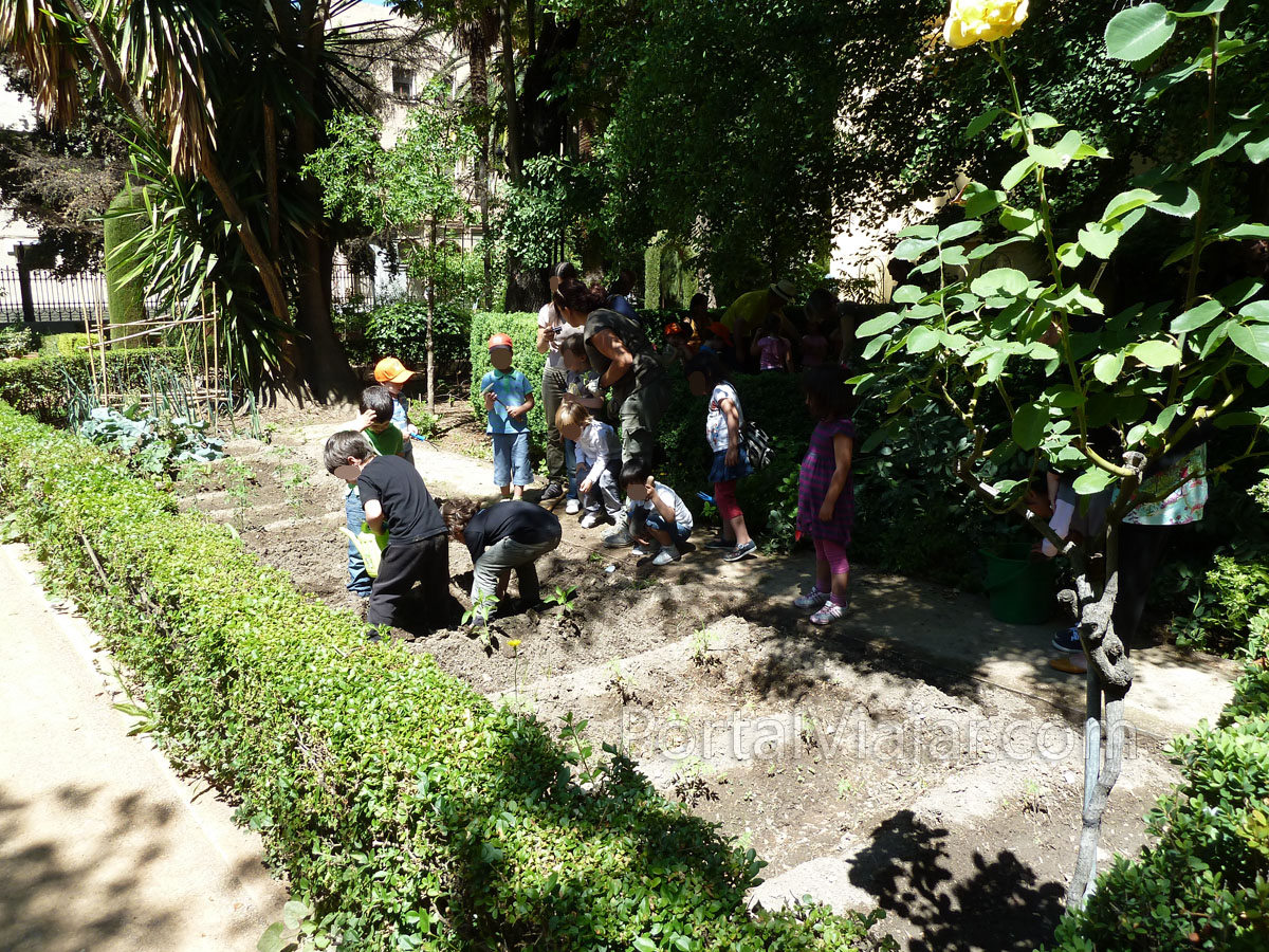 granada 155 - jardin botanico de la universidad de granada