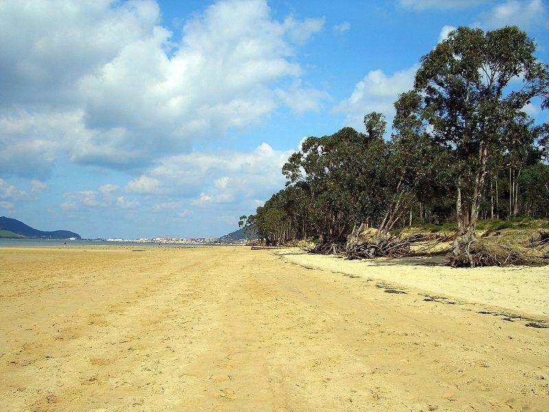 Playa de Regatón (Laredo)