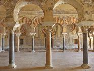 medina azahara 5 - salon rico - interior