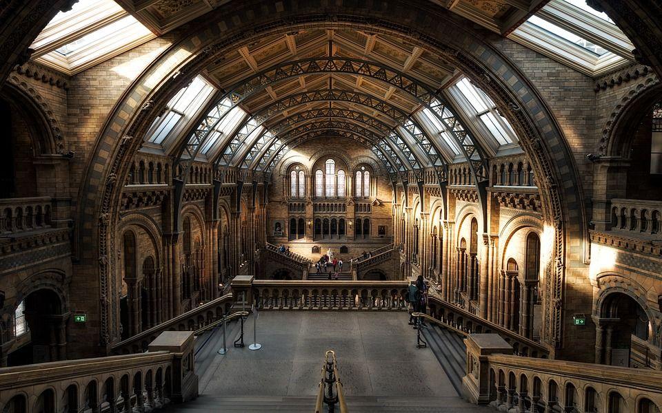 museo de historia natural de londres 2 - interior